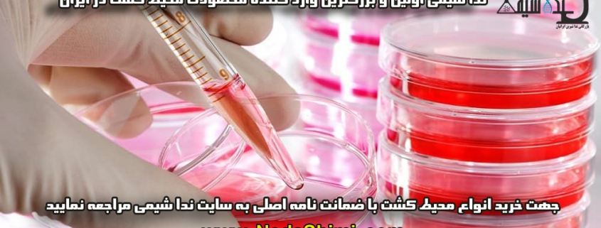 مراحل کشت سلول ها