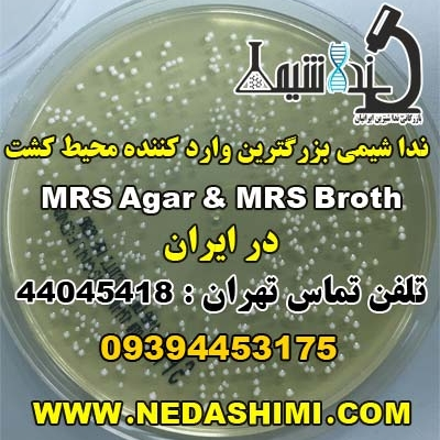 MRS-Agar-&-MRS-Broth