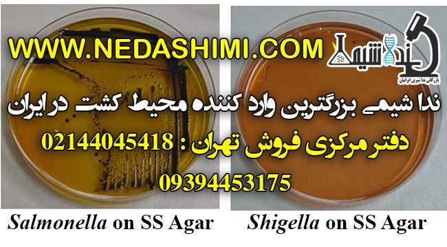 Salmonella-Shigella-Agar